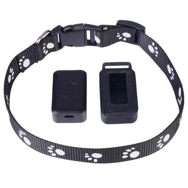 Real-Time GPS Tracker For Pets
