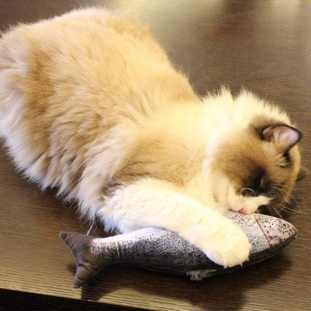 Fish Stuffed Toy for Pets
