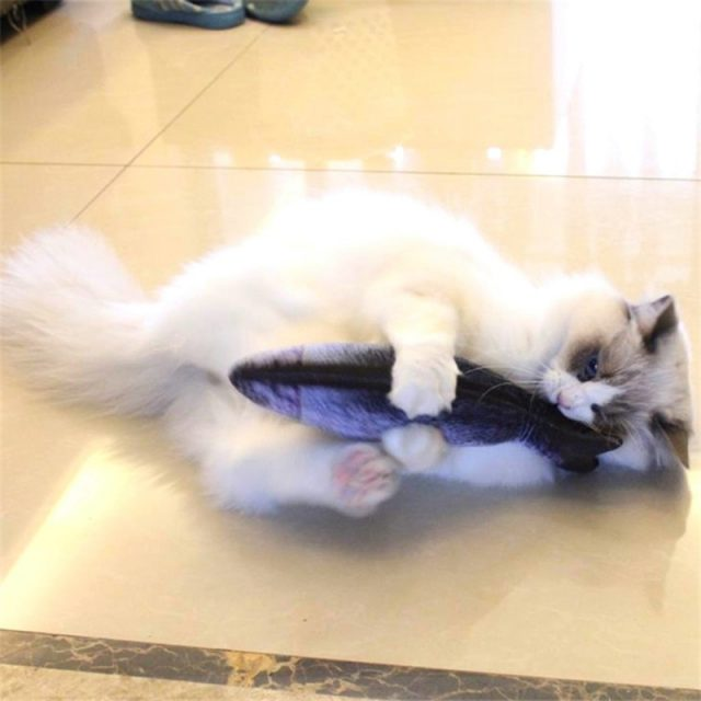 Cat's Chewing Fish Shaped Plush Toys