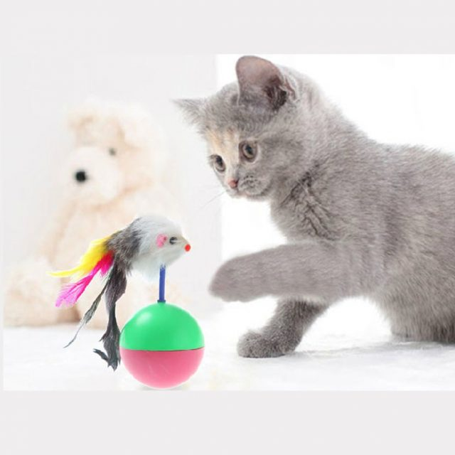 Plastic Toys Balls for Cats