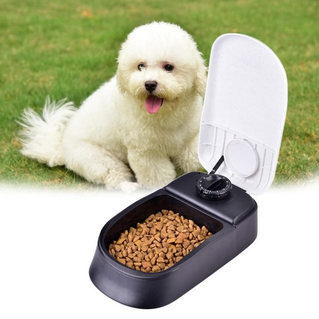 Pet's Automatic Timing Plastic Feeders