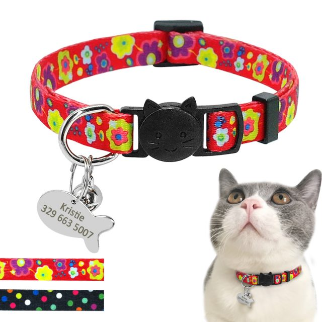 Printed Collar with Quick Release Buckle