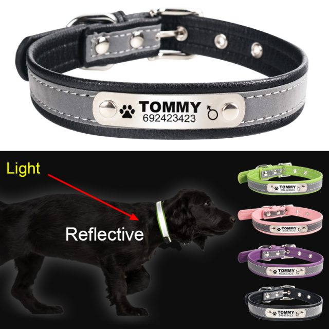 Personalized Reflective Leather Collar