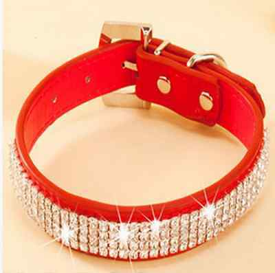 Dog's Personalized Collars With Rhinestones