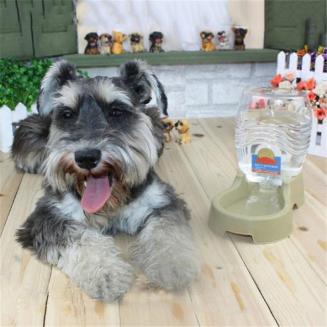 Pet Dog Automatic Drinking  Water Feeder