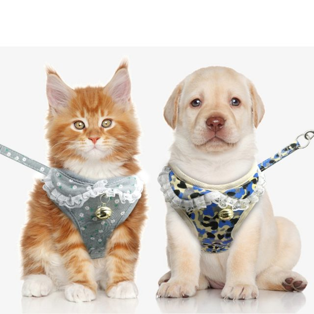 Dog Cat Harness And Leash Set Soft Mesh Puppy Kitten Vest With Bell Cute Printing For Small Medium Dogs Cats Chihuahua Yorkie