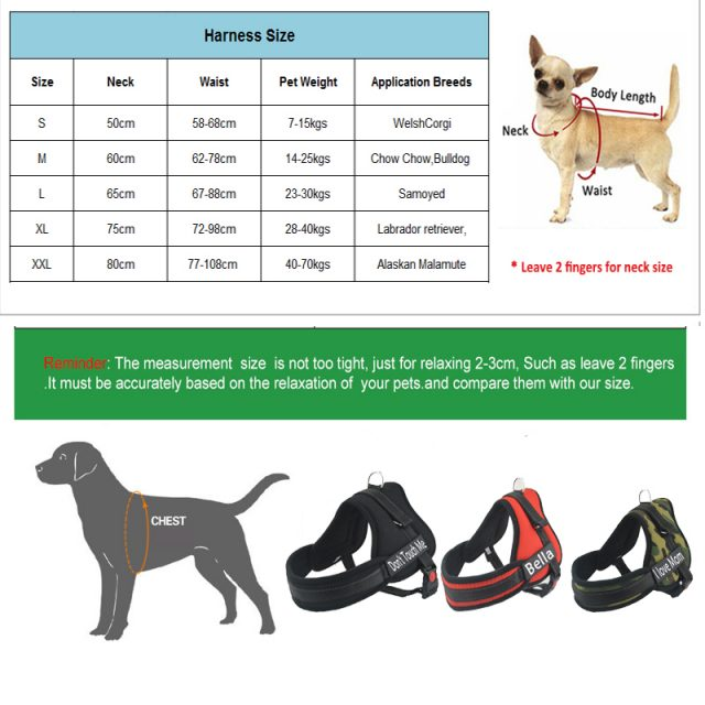 Personalized Harness for Dogs