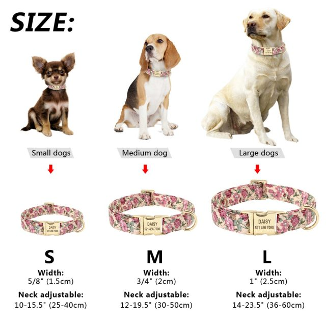 Personalized Floral Dog Collar