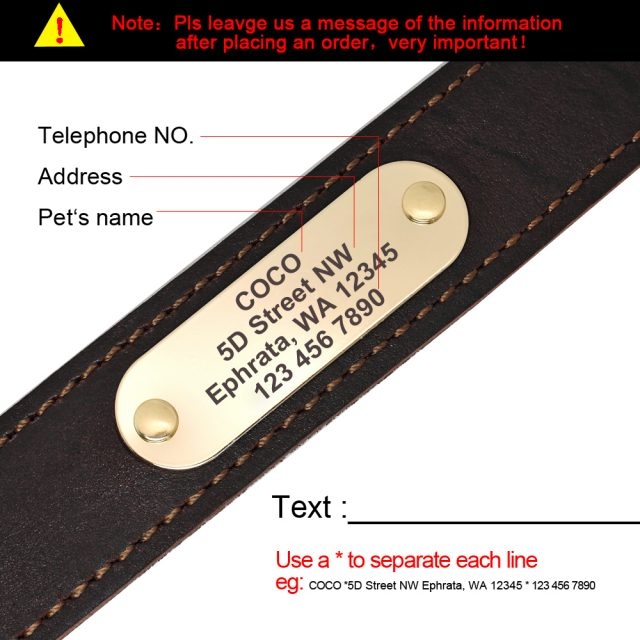 Genuine Leather Dog Collar Personalized Dog for Large Dogs