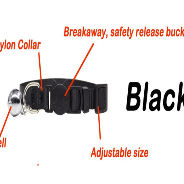 Personalized ID Cat Collar Safety Breakaway