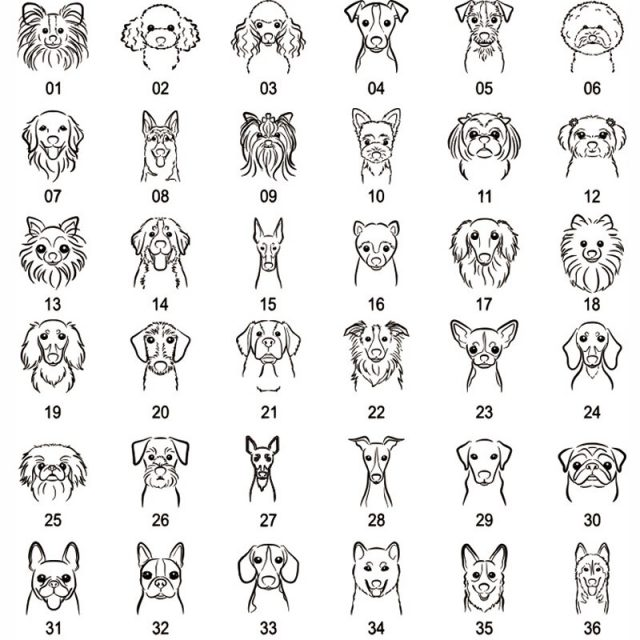 Free Engraving Cat id Tags Stainless Steel Personalized Dog Cat Collar Accessories Pet Necklace ID Name Tags Cat Collar id Tag
