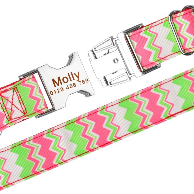 Free Engraved Personalized Dog Collar Fabric ID Name Tag Buckle Customized