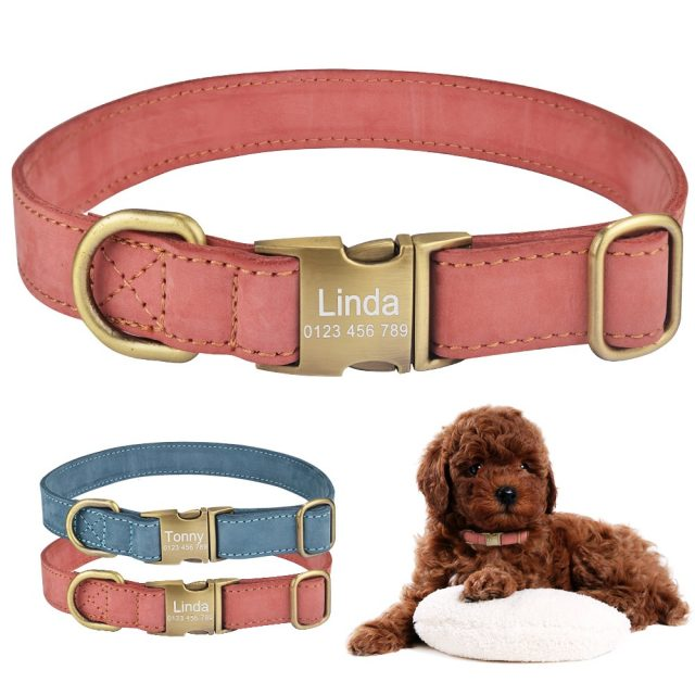 Leather Dog Collar Personalized Puppy Name Custom Engraved Boy Girl Buckle S-L