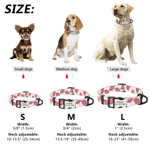Dog Collar Personalized Pet Cat ID Collars Free Engraving