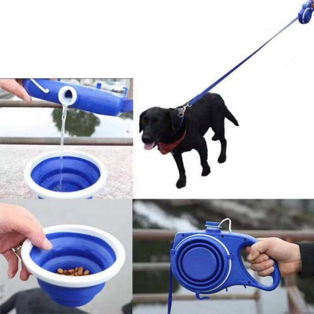 3M Retractable Dog Leash With Water Bottle Extending Dog Puppy Cat Traction Rope Belt Dog Leash for Small Medium Dogs Hands Free